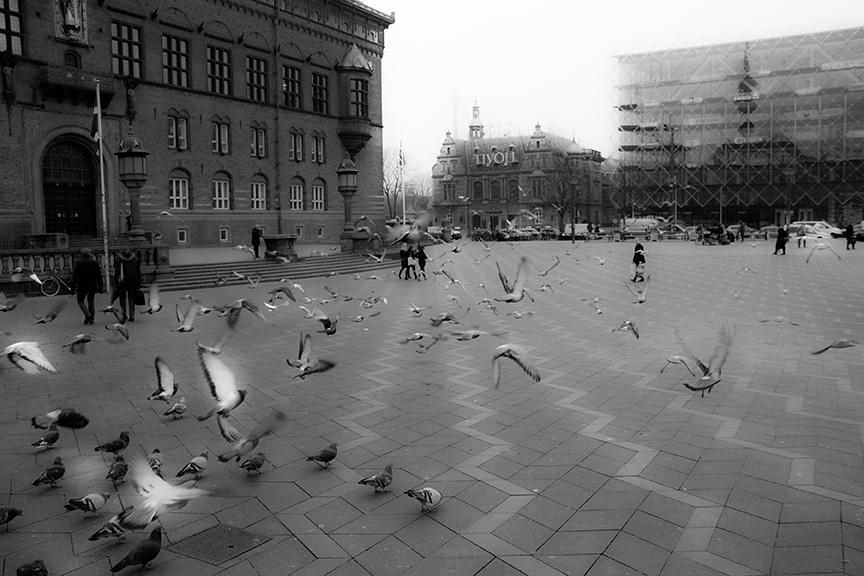 コペンハーゲン市庁舎の前でハトが飛び立っている