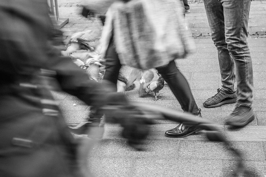 街中を歩く人の足元とハト